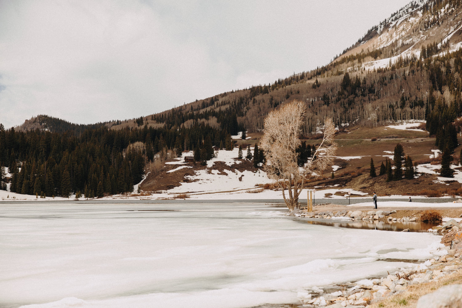 Fly Fishing in Telluride at Trout Lake