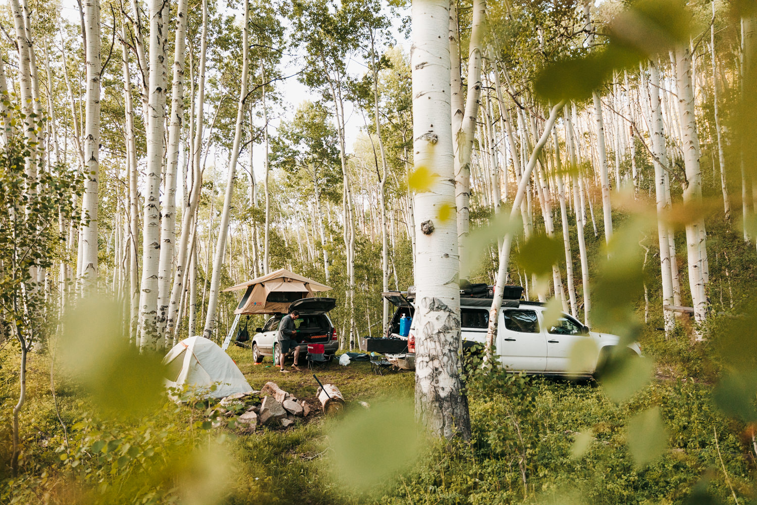 national forest camping in Telluride