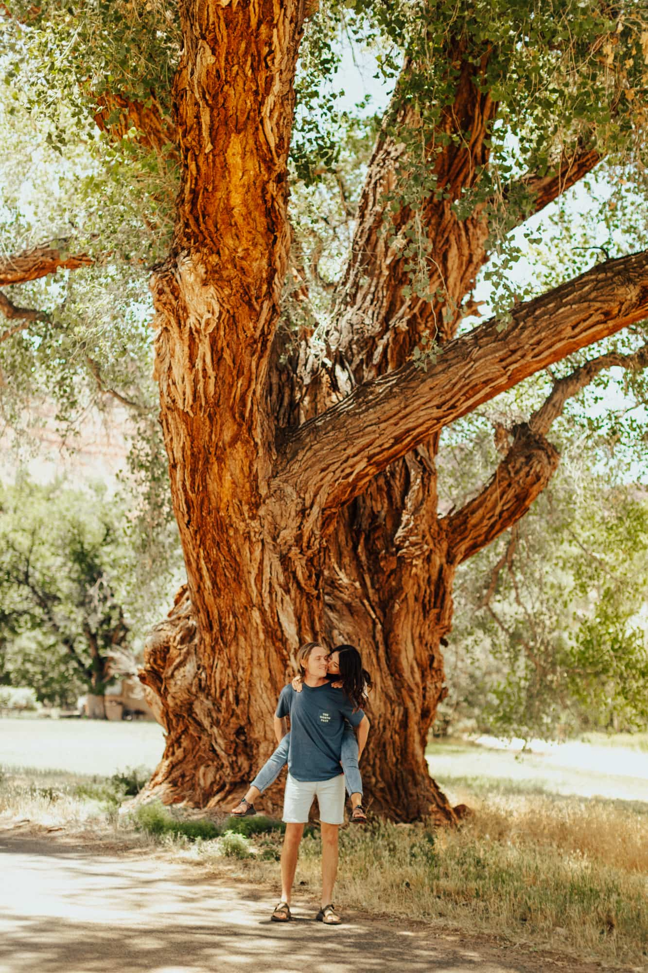 Couple kissing underneath tall tree in Moab, Utah