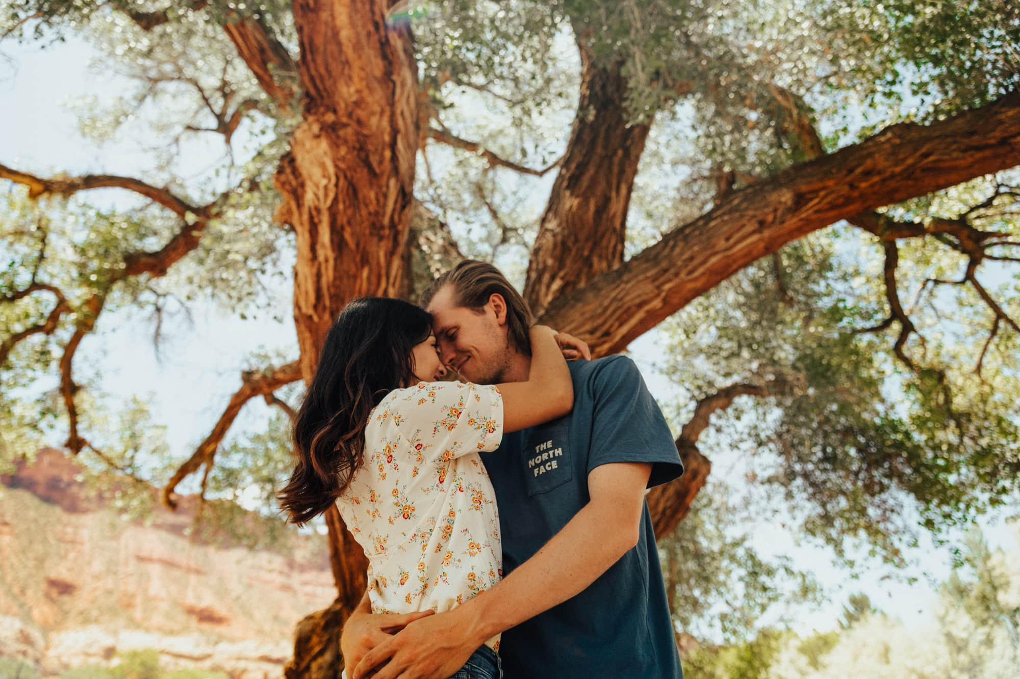 Couple portrait of them kissing underneath a giant tree