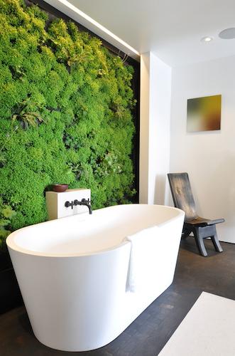 Bathroom plant wall.png