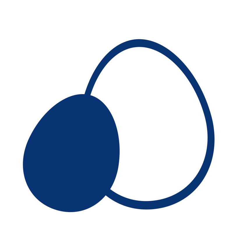 Icon Egg@3x.png
