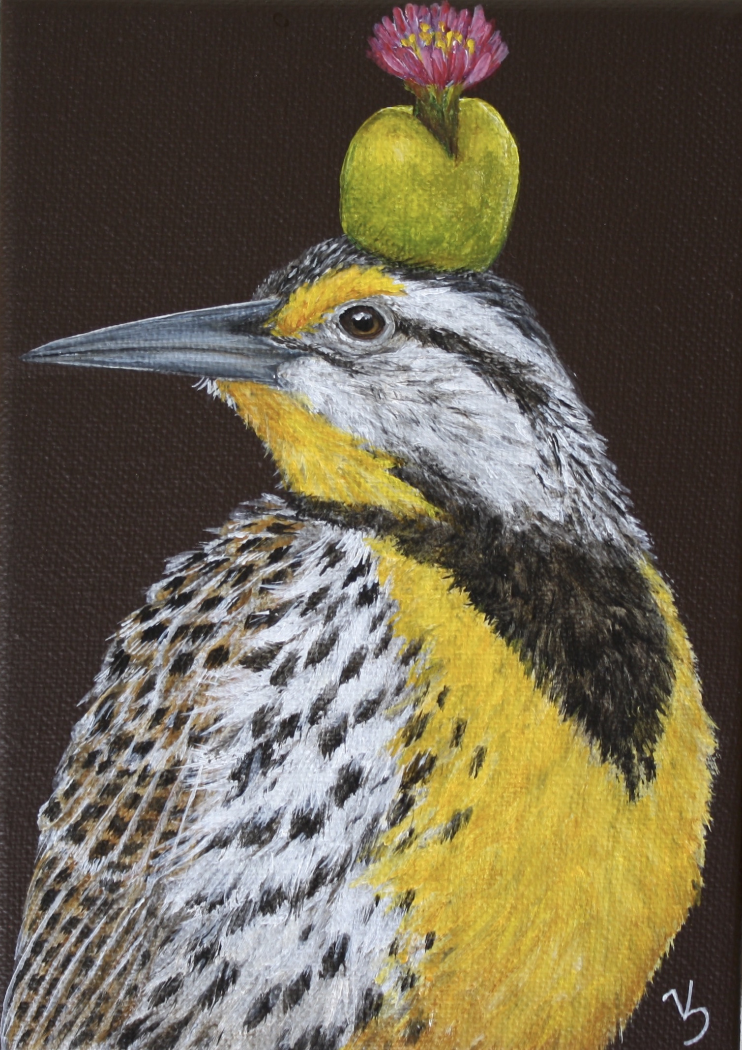 Danny, eastern meadowlark with flowering succulent (1).jpg