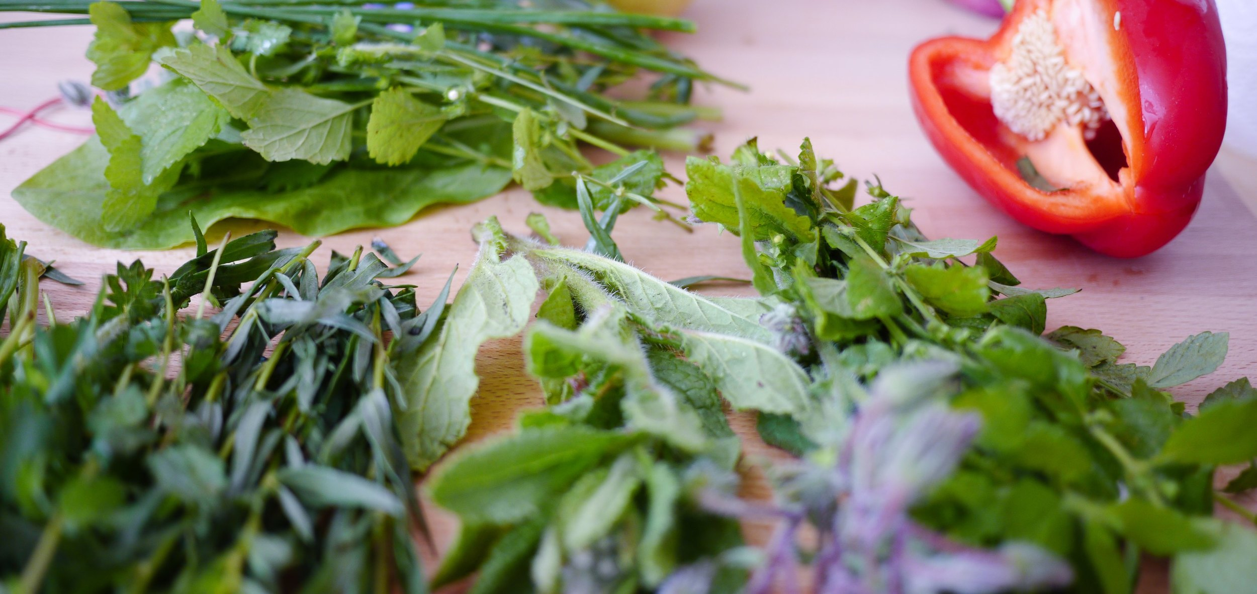 HERBS FOR TASTE AND HEALING