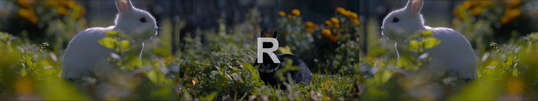 R_Final.jpg