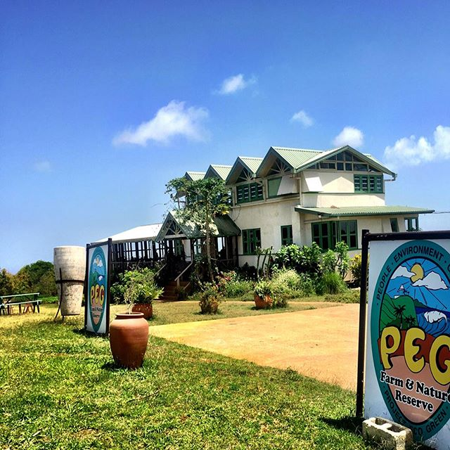 Had a chance to visit this amazing farm @pegbarbados while on vacation in Barbados with my family and friends a couple weeks back. A true farm that could be the heart of every town, village and community . Creating great soil ,animals, vegetables and fruits through diversity. It even had a school for children🙏 #actinoliterestaurant #biodynamicfarming #theheartofacountry #truenourishment