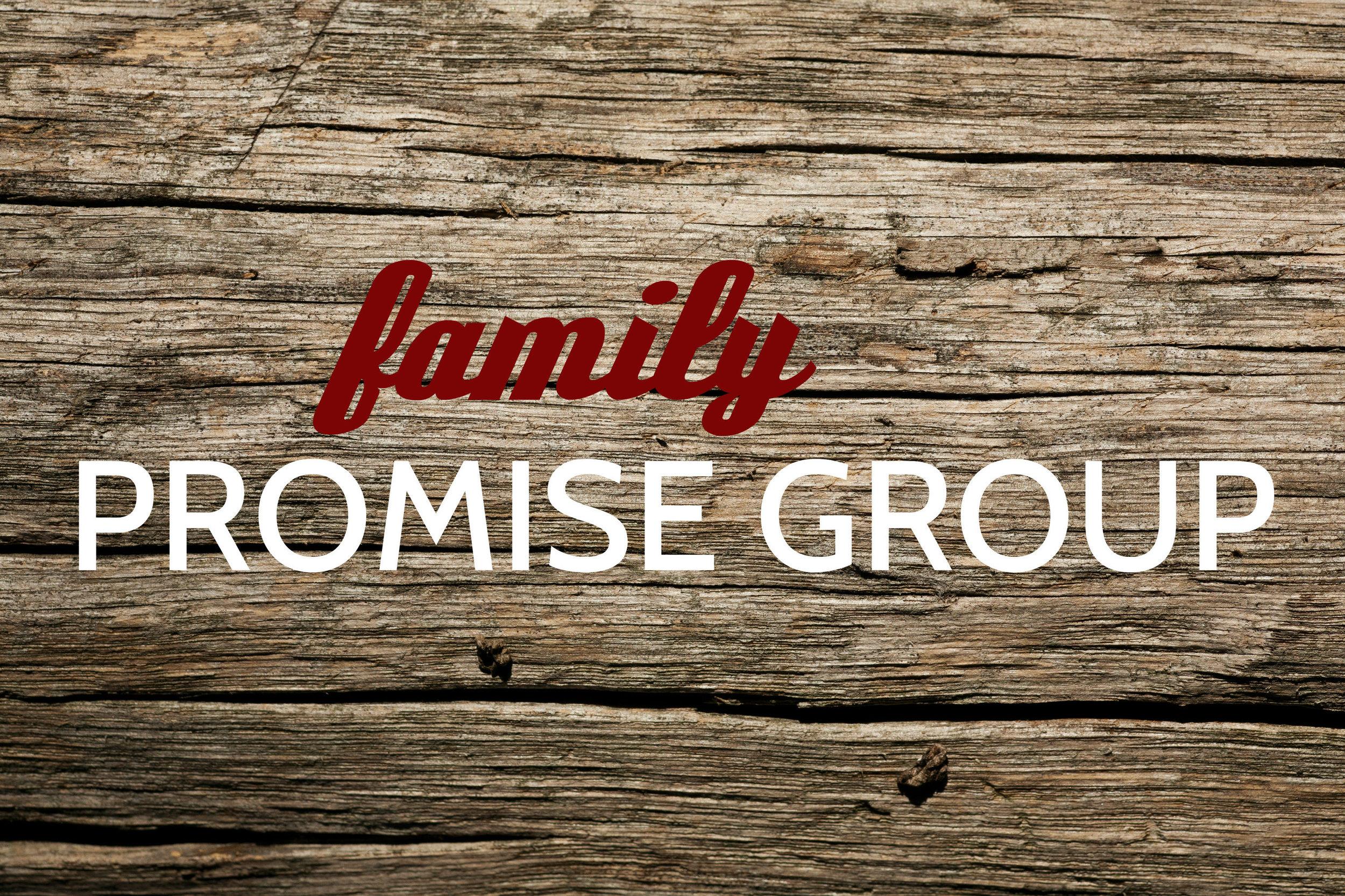pic_promise group_family.jpg