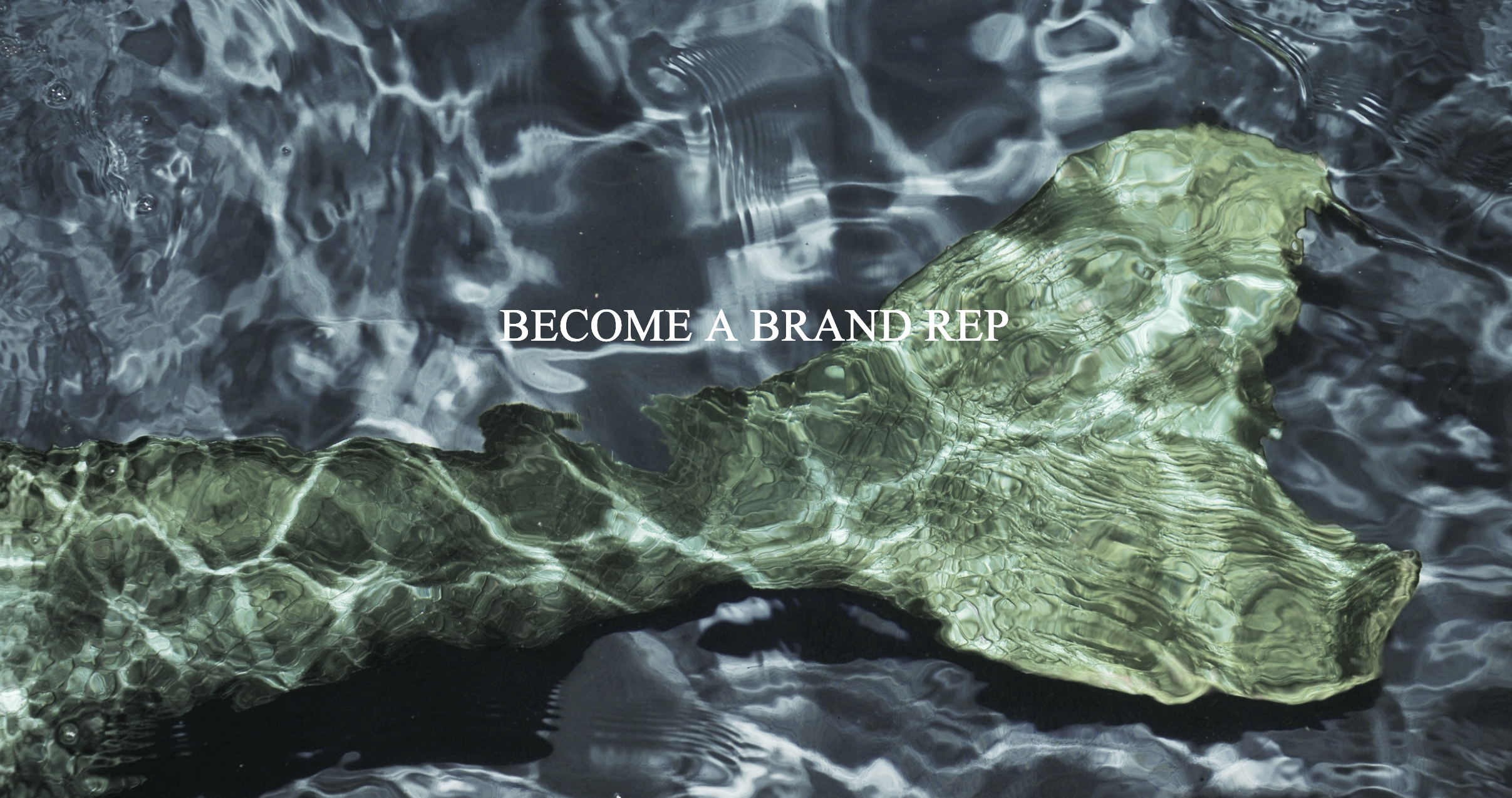 NOW LOOKING FOR - SIRENE BRAND REPS