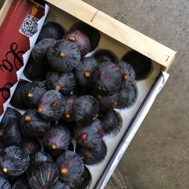 Black Figs in late summer    Photo ©Evie Saffron Strands    Figs   This week we have the most luscious black  Figs  from France, so, it seemed fitting to focus in on Figs for this week's News report.  Many fig trees, when grown in the hot and dry conditions of a long summer, produce two crops a year.  The first fruits, known as  breba , develop in Spring on the previous year's shoot growth and are harvested in early summer.  The second crop develops mostly on current season stems.  These fruits, grown at the hottest time of year ripen in late summer into autumn and have an unparalleled honeyed sweetness.     The fig is a member of the Mulberry family and is more flower than fruit; being a fleshy flower base that has folded in on itself.  The inner female florets develop into small individual dry fruits that crunch like seeds.  They contain a surprisingly large amount of calcium for a fruit.  Notable European fig varieties include   Black Ischia  , (dark purple in colour with golden flecks and a luscious violet-red pulp);   Adriatic  , (a green fig tinged with purple or red with deep red interior); and the sweet   Marseilles  , (coloured yellow/green with green flecks and a white pulp).  The honeyed quality of their flesh means figs are not only good for desserts but match beautifully with savoury ingredients like anchovies, poultry and air-dried meats.  They pair equally well with pungent creamy cheeses like Gorgonzola or Stilton, or a milder soft goat's cheese.  Thyme is a herb that mingles happily with figs.  For a sweet end to a meal, they are delicious just as they are – particularly if they are so luscious they have begun to split - but they go well with chocolate, nuts and orange and spices like aniseed, cinnamon and vanilla.  Less ripe ones are delicious baked in the oven in red wine, sugar and spices and maybe a little orange zest too.  And don't forget, figs make wonderful chutneys and jams.