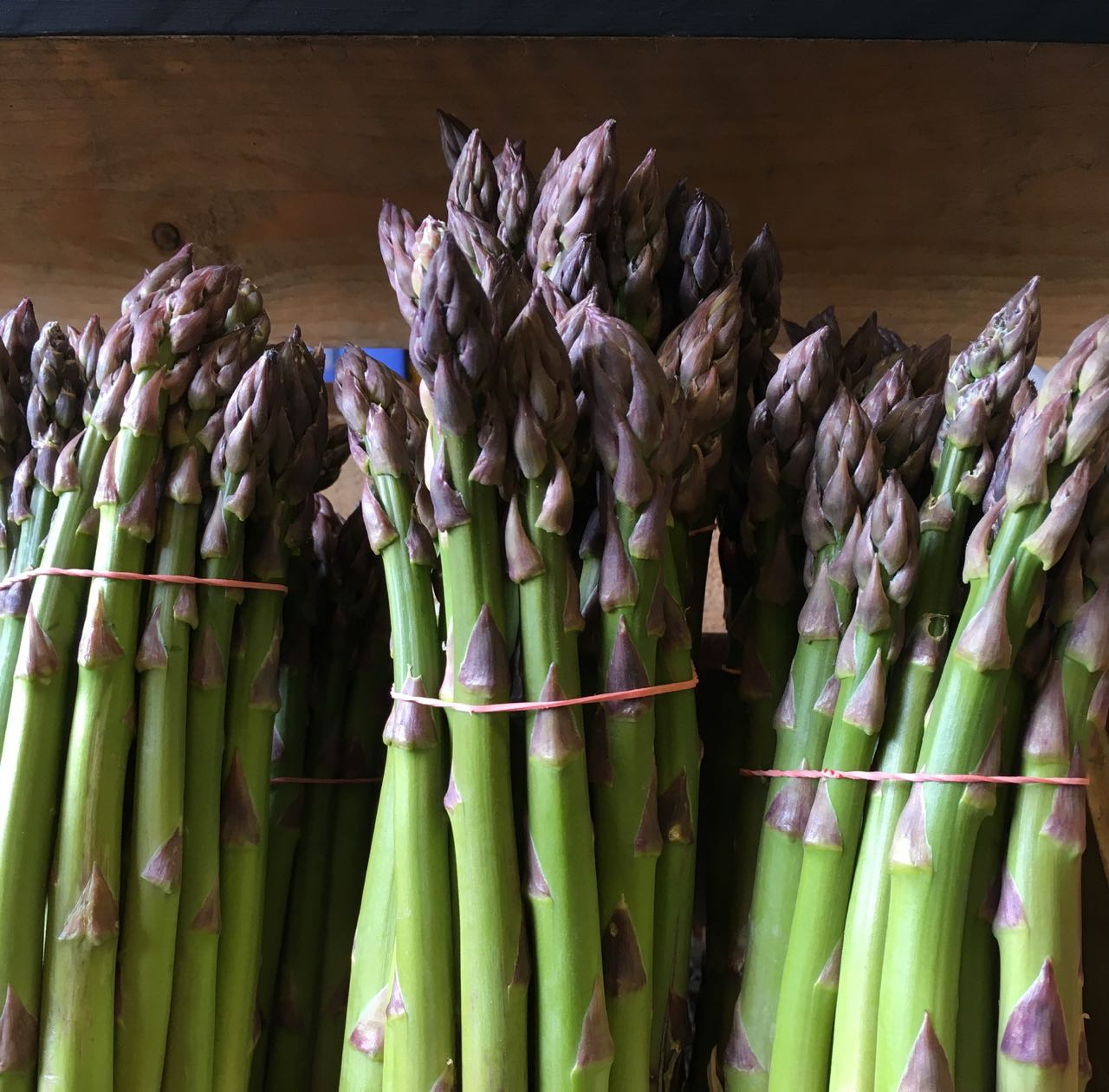 English Green   Asparagus    Photo ©Evie Saffron Strands      Asparagus      Asparagus  grows from long-lived rhizomes that spread underground. The spears are the tender young shoots of  Asparagus officinalis  that grows into a fernlike plant over a metre tall when harvesting ends.    The spears start pushing through the ground in early Spring. In recent years, a variety of 'early-season' asparagus has been developed enabling some producers to get an Asparagus crop to market ahead of the game. Normally, the asparagus farmer has a few weeks of frantic activity harvesting the crop for market, and then it's all over until next year. Traditionally, in the UK, the season begins around St George's Day (23 April) and by mid-Summer's Day cutting should stop. The plants continue to put up spears but these are allowed to grow into tall fronds that photosynthesise in order to build up nutrients in the rhizome for next year's crop. In November the plant is cut back to ground level.     It takes about three years for an asparagus crown to become established and, if treated right, it can be productive for 10 years. Harvesting of Asparagus has to be done by hand. The white version is even more labour intensive as the growing spears have to be banked-up with soil to produce the blanched stems. Popular since the 18th century, white asparagus has a more delicate flavour than the green. If exposed to light after harvest, white asparagus will turn yellow or reddish. Purple varieties of asparagus are high in anthocyanins, though, like other purple and red coloured vegetables, cooking results in loss of this colour and it turns green.    This all adds up to making asparagus one of the most expensive treats of spring and early summer. Freshness is key to taste so, when you do finally get your hands on it, don't let it linger in the fridge or it will lose its sweetness. The spears are packed with beneficial nutrients - vitamins A and C, folic acid, potassium and iron. They have a natural s