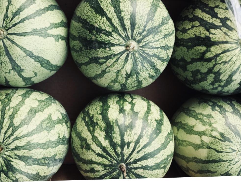 Sicilian watermelons     Photo © Puntarelle & Co