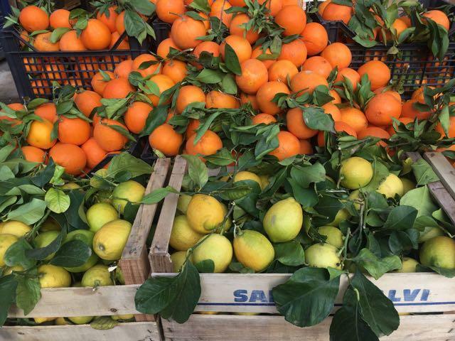 Italian Oranges & Lemons    Photo ©Evie Saffron Strands