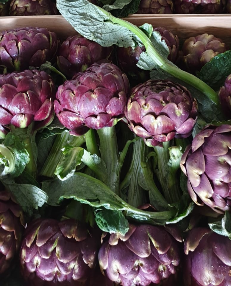 Roman Artichokes    Photo © Puntarelle & Co