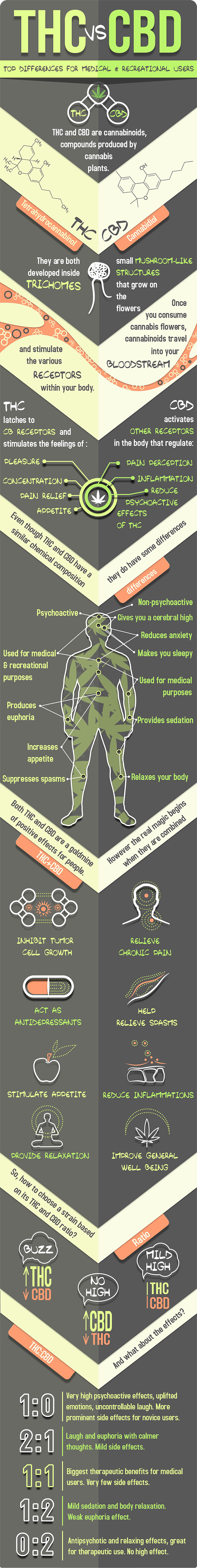 THC-vs-CBD-Infographic-2.png