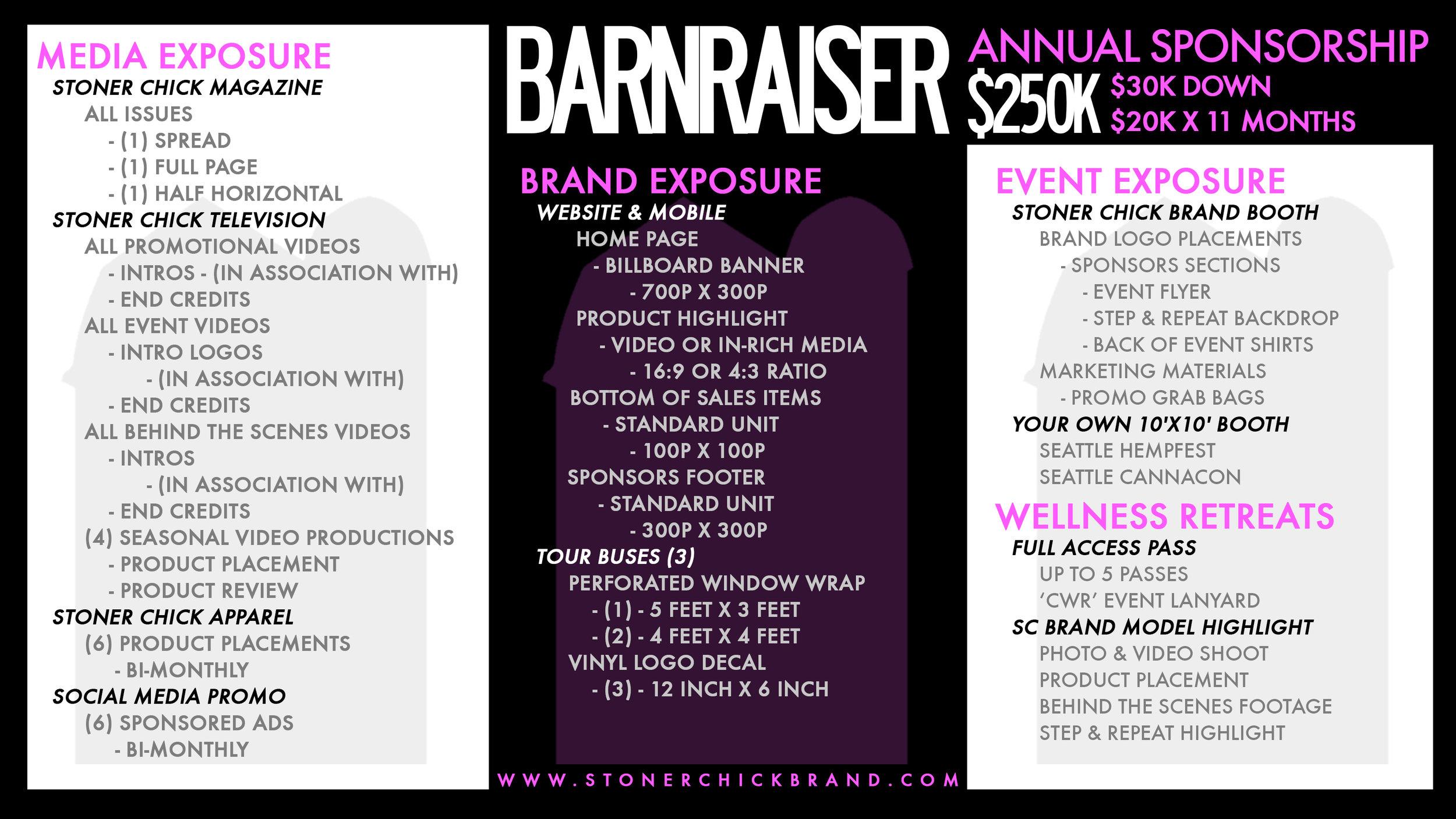 Sponsorships_barnraiser.jpg
