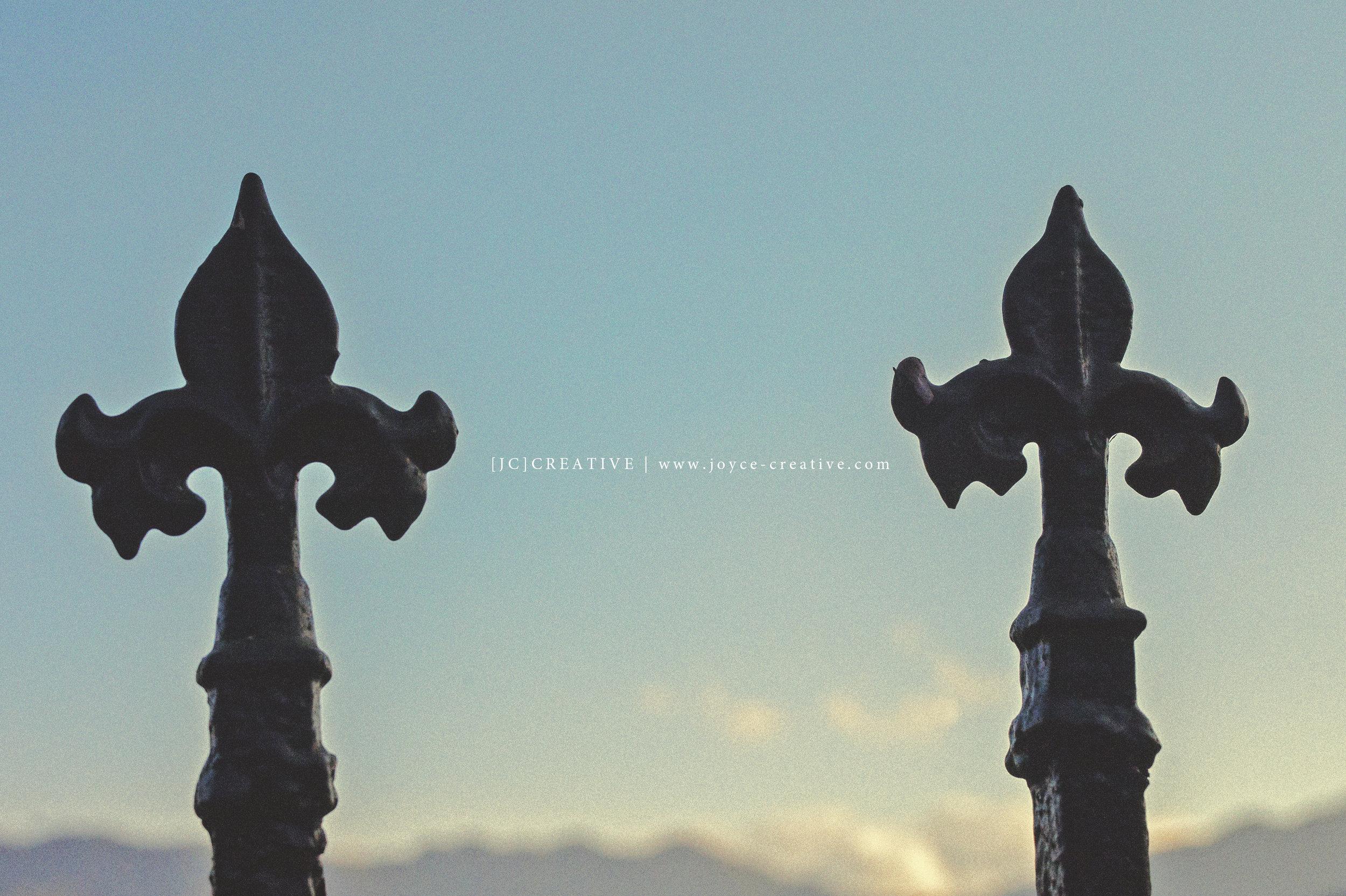 攝影 | [JC]CREATIVE / 地點 | 台灣自宅
