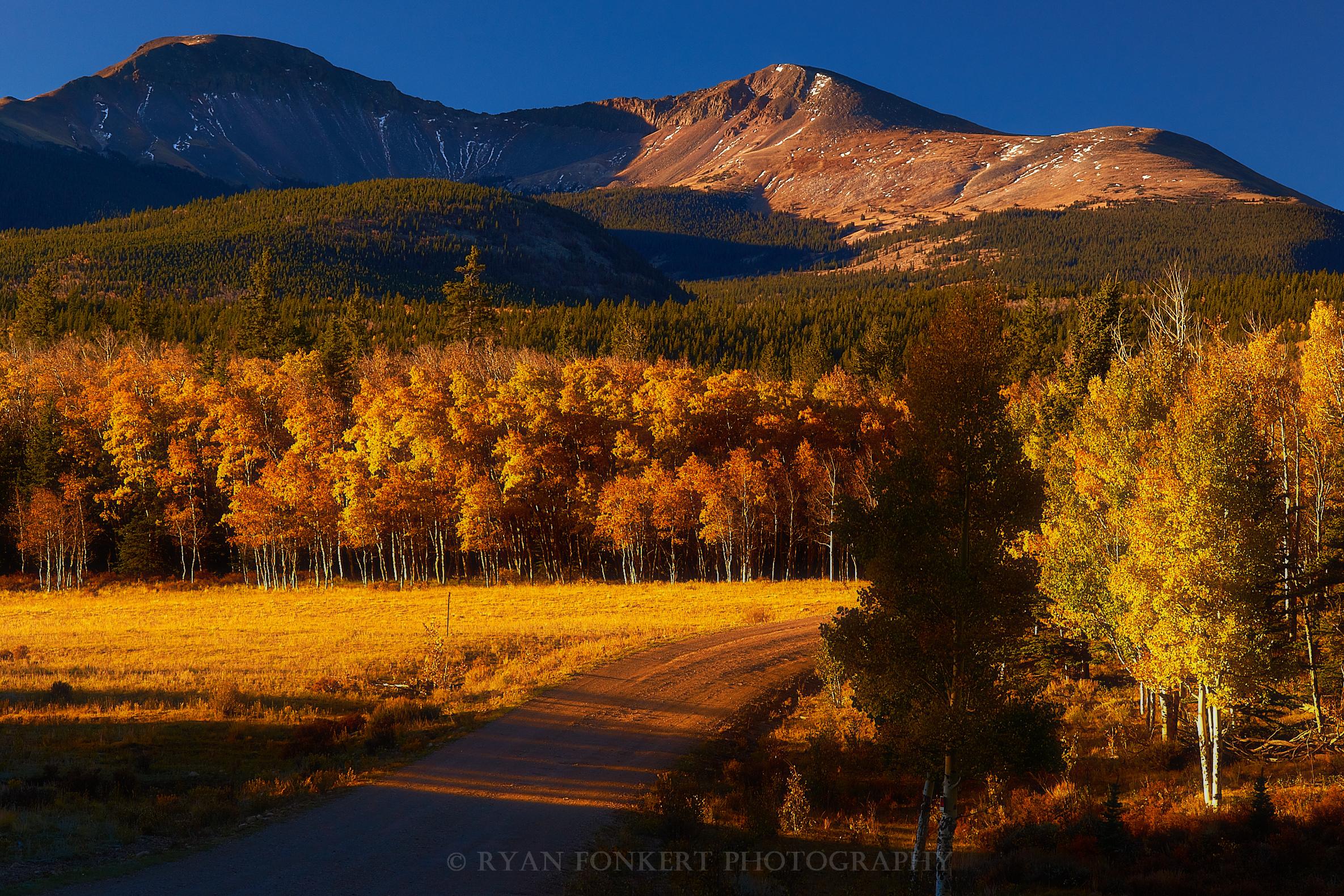 Landscapes_DSC06860.jpg