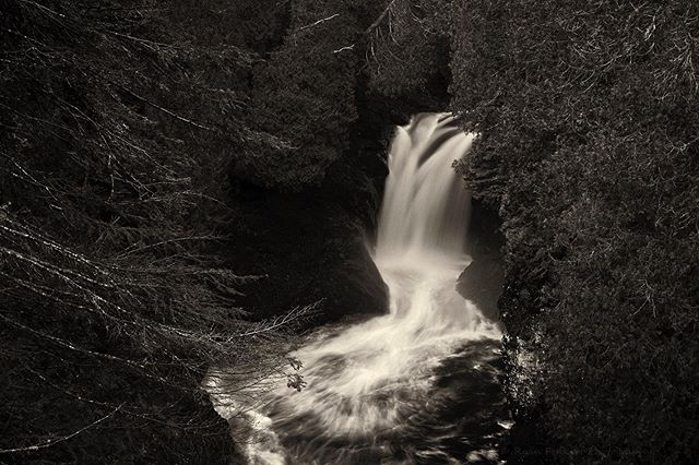 The lower cascades at #CascadeRiverStatePark. I had shot the upper cascades a couple years ago; finally got some shots of the lower ones this year. Shot a few weeks ago on my annual Fall trip up north.  #waterfalls #river #MNStateParks #onlyinmn #captureminnesota #nature #landscapephotography #blackandwhite #bw #minnstagram #minnstagramers #ryanfonkertphotography