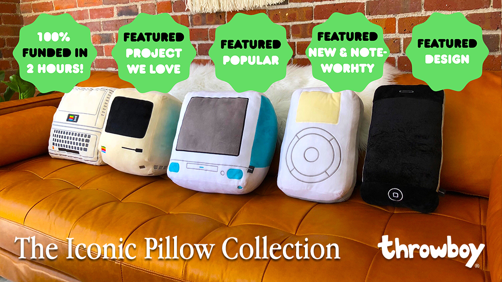 - View our smash kickstarter projectthe iconic pillow collection