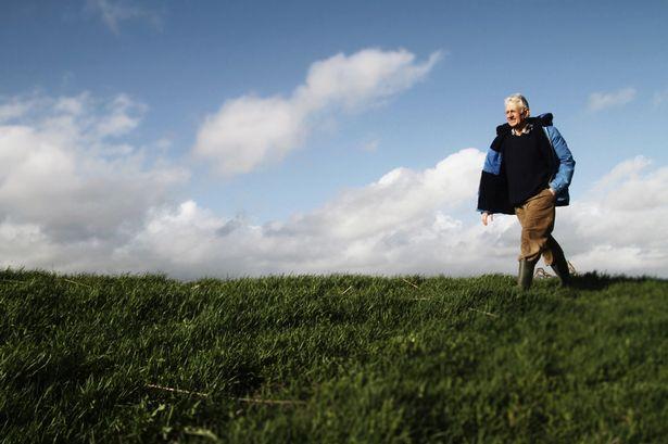 Old-Man-Walking.jpg