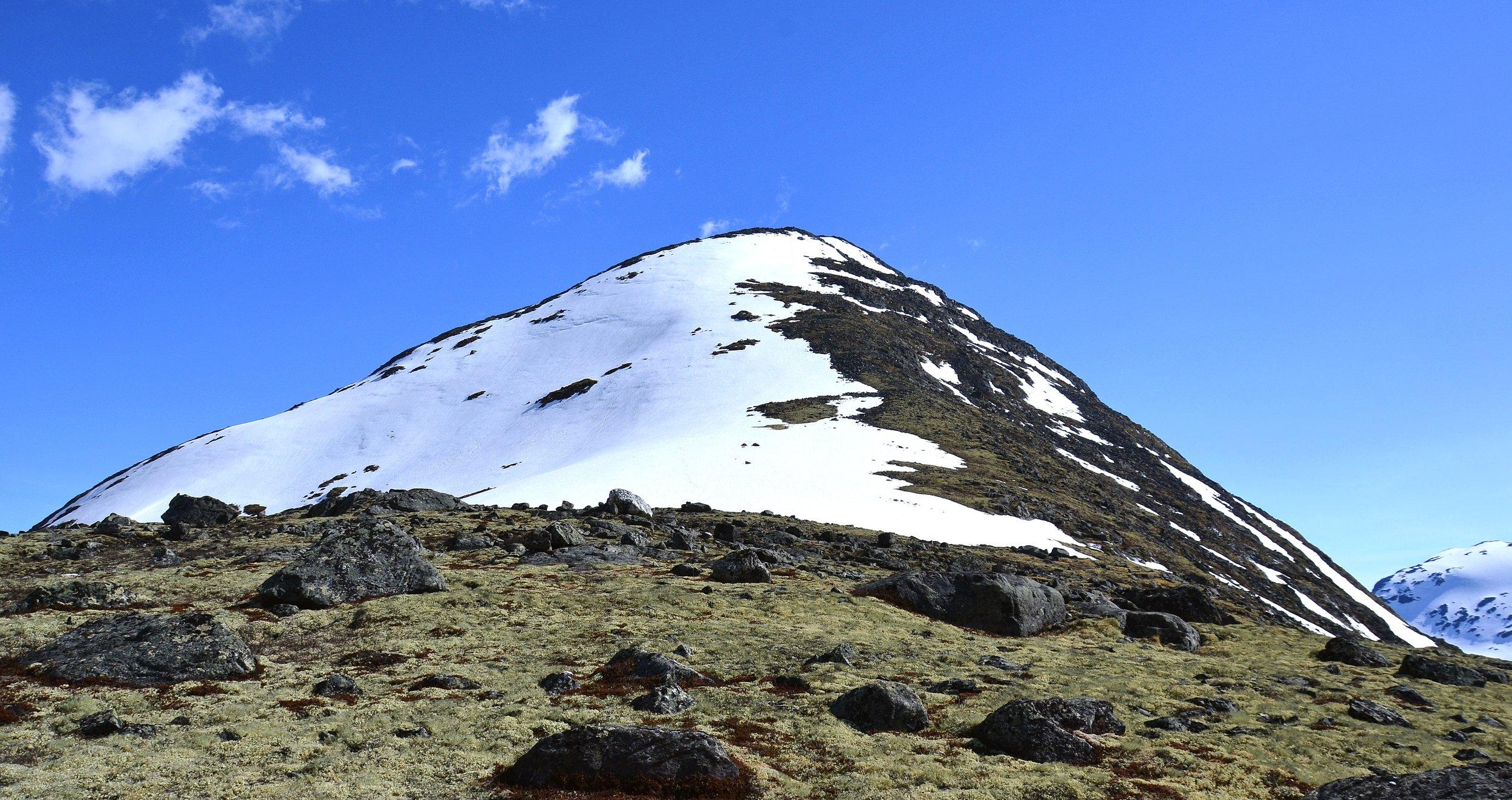 Brattryggen opp mot Sauhøe, frå ca 1400 moh..JPG
