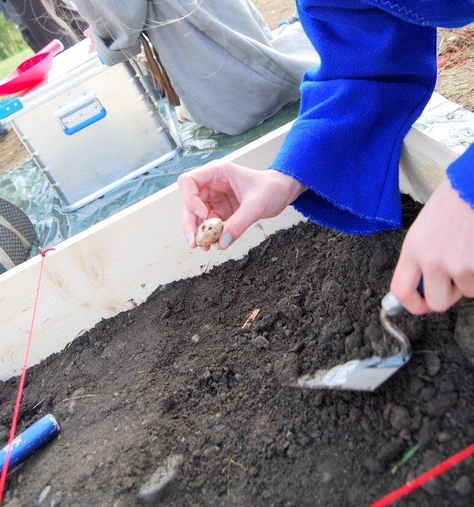arkeolog for ein dag   For 1.-4. steg  Arkeologisett med replikaergraves ned innafor eit oppmerka område i ei sandkasse. Elevane lærar om kva ein arkeolog er og korleis de jobbar.Kva finn dei i jorda og korleis tek ein vare på det ein finn. Ungane får prøve seg som arkeologar og må jobbe analytisk med å beskrive, teikne og måle opp det dei finn i registreringsskjemaer. Fokus på jernalder.