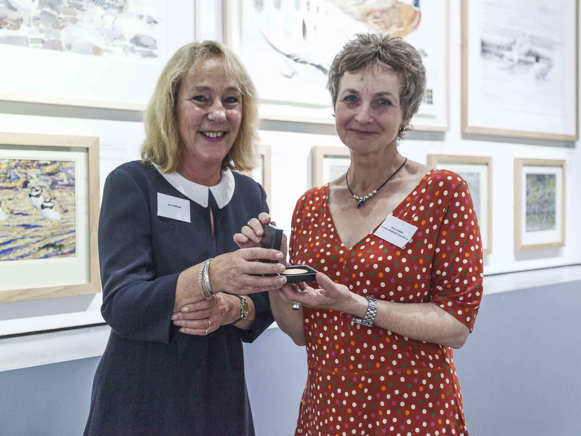 Receiving the BTO Dilys Breese Award