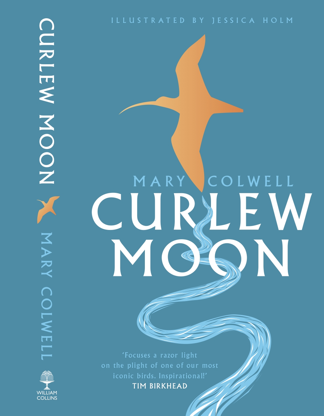 Curlew Moon book cover