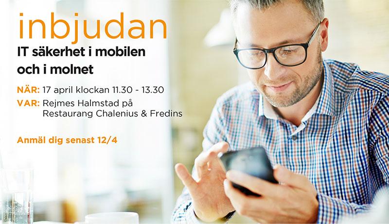 Halmstad_event.jpg