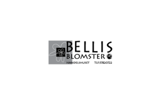 Bellis-blomster-[Converted].png