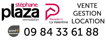 stéphane plaza immobilier.png