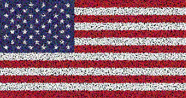 The American Flag Project