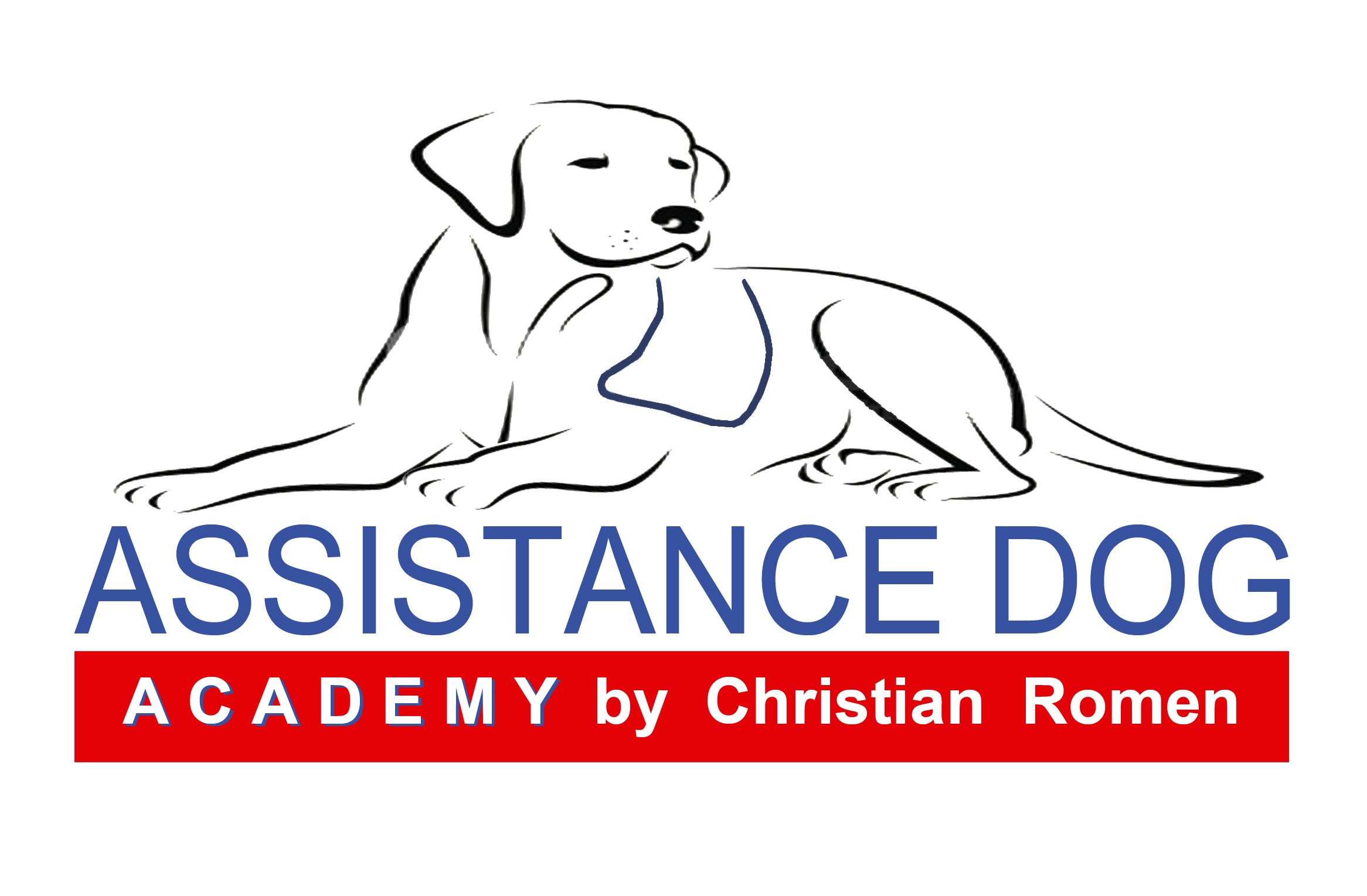 www.assistancedogs.it