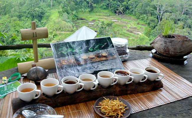 Bali-Coffee-and-Spices-Plantation.jpg