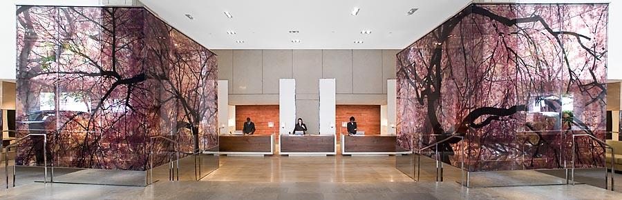 Park Hyatt DC dc-lobbypanorama.jpg