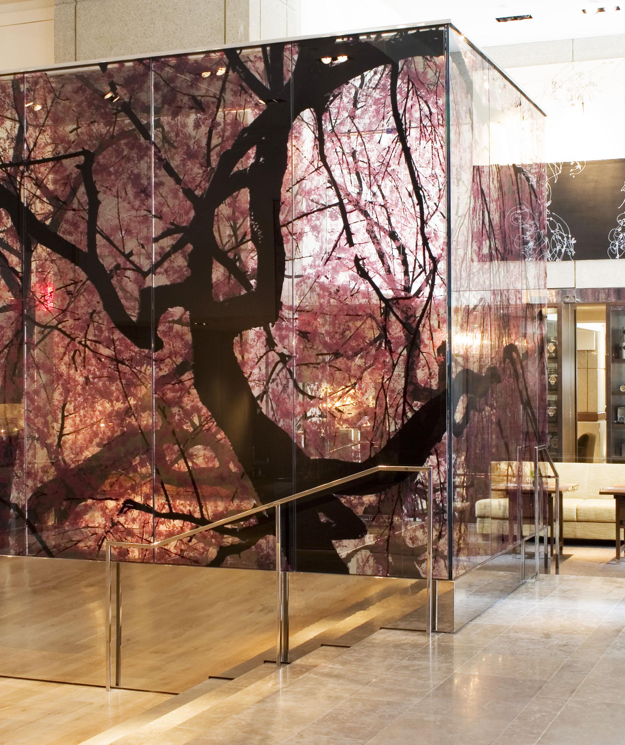 Park Hyatt DC hyatt dc.jpg