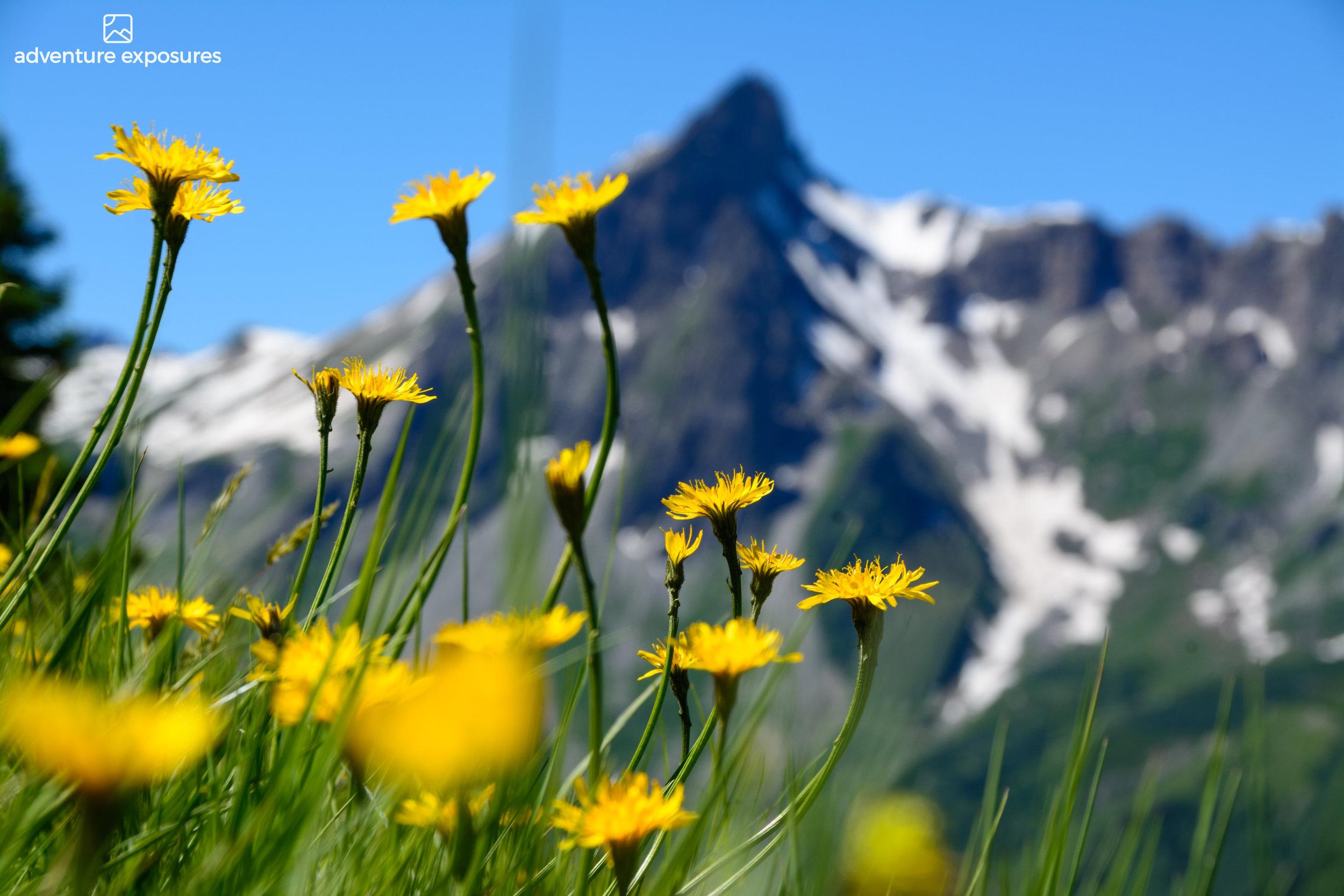 Les Contamines-Val Montjoie to Conscrits refuge. Mont Blanc Royal Traverse