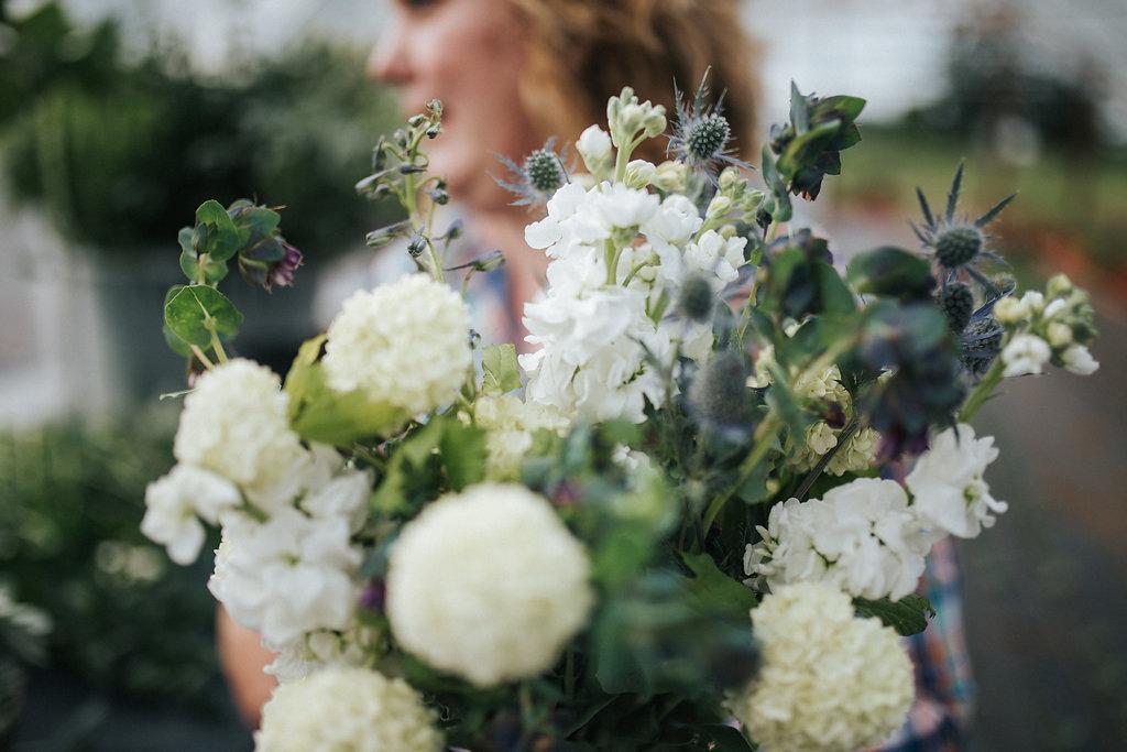 Bellingham Florist