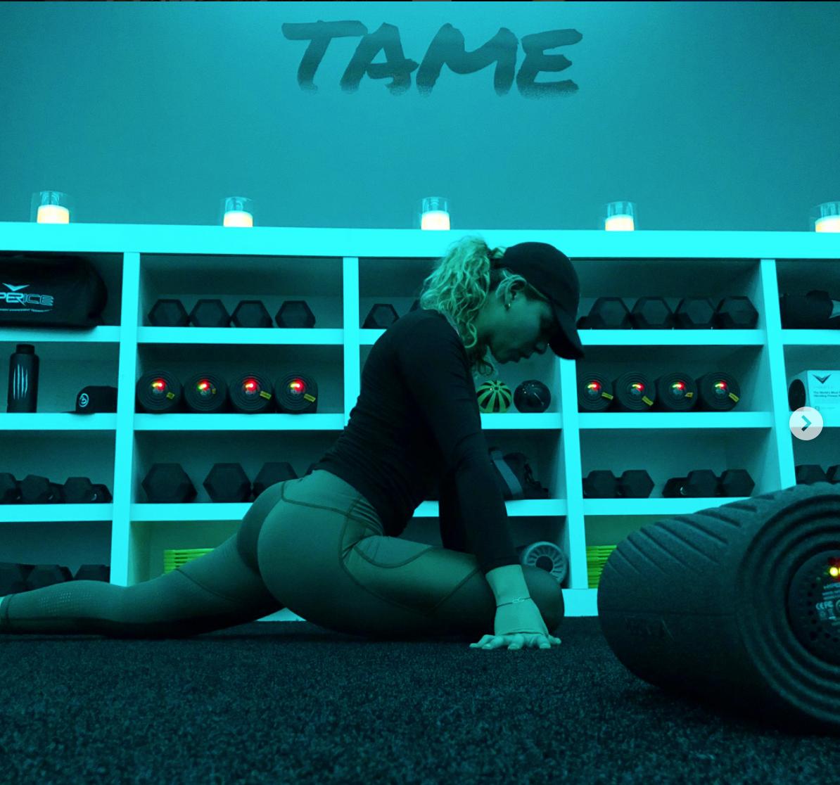 tame-2.png
