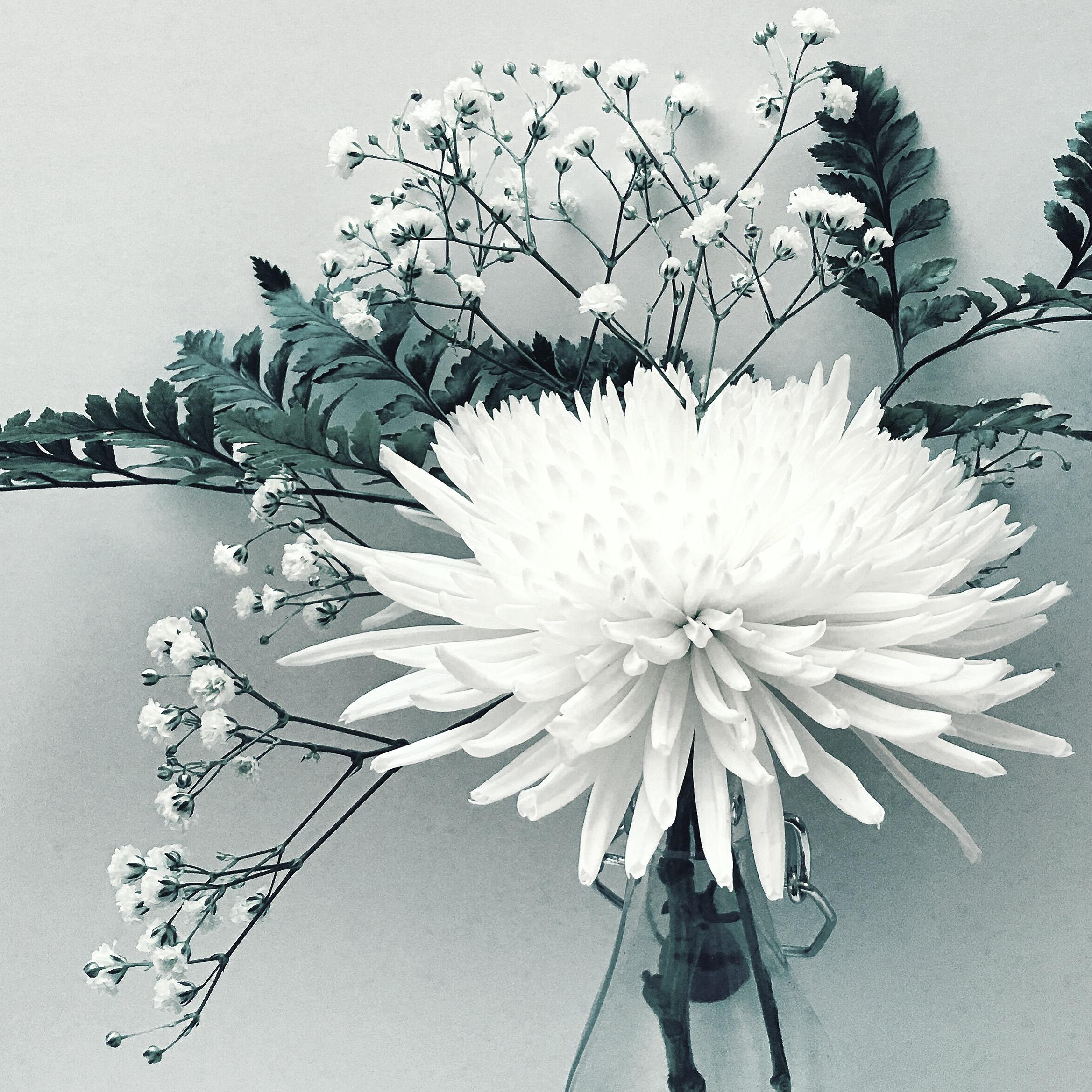 Flowers in Bottle.JPG