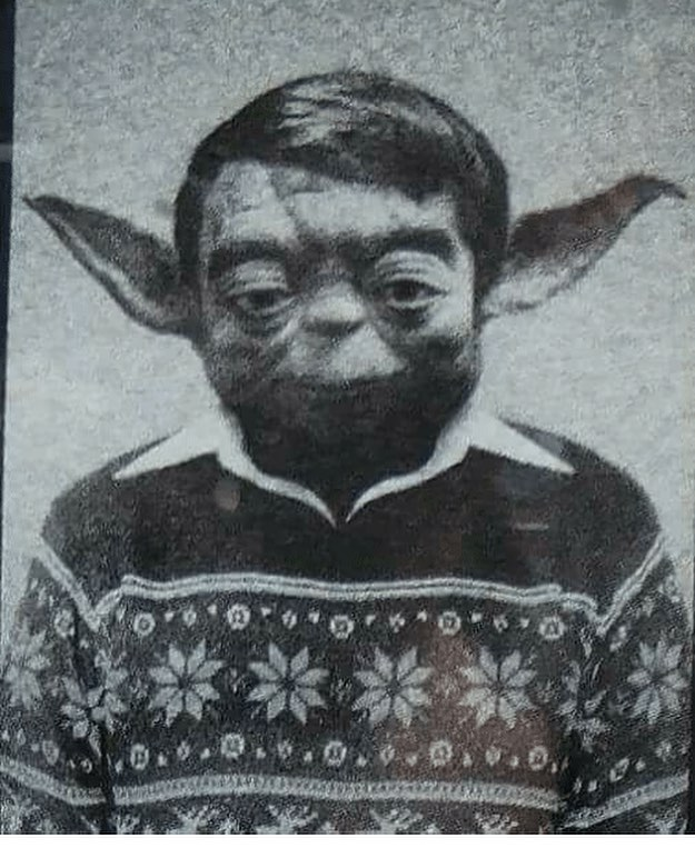 This high school picture of Yoda is just too good not to share!😂😂😂