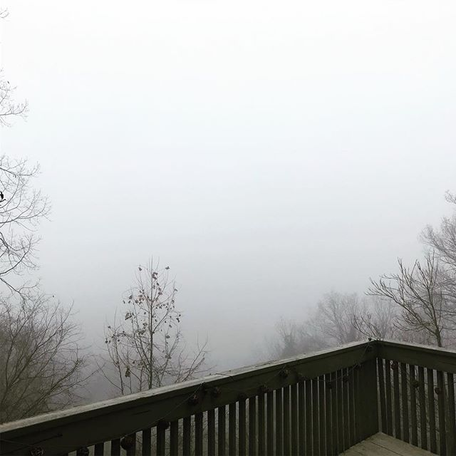 Foggy days up here on the hilltop are always so peaceful! Makes me feel like I'm on a planet from Star Wars