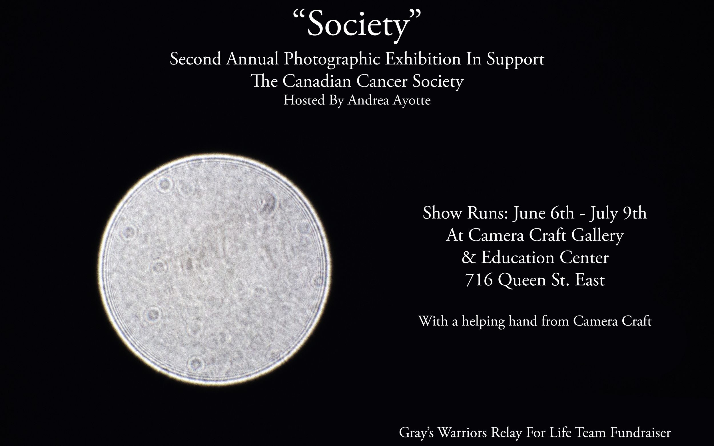 Various Artists - Second Annual Cancer Society Fundraiser