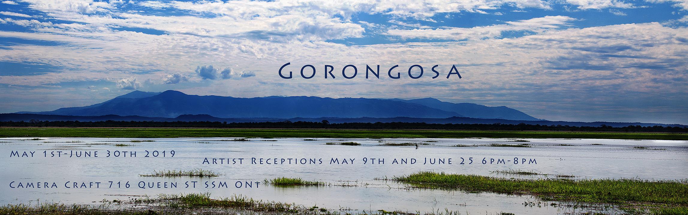 Panorama Mount Gorongosa title page.jpg