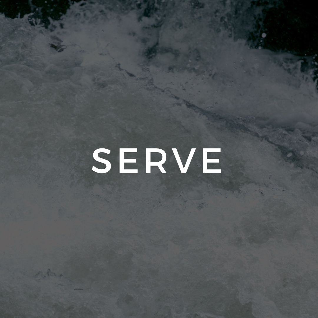 "<p><strong>SERVE</strong><a href=""/impact"">"