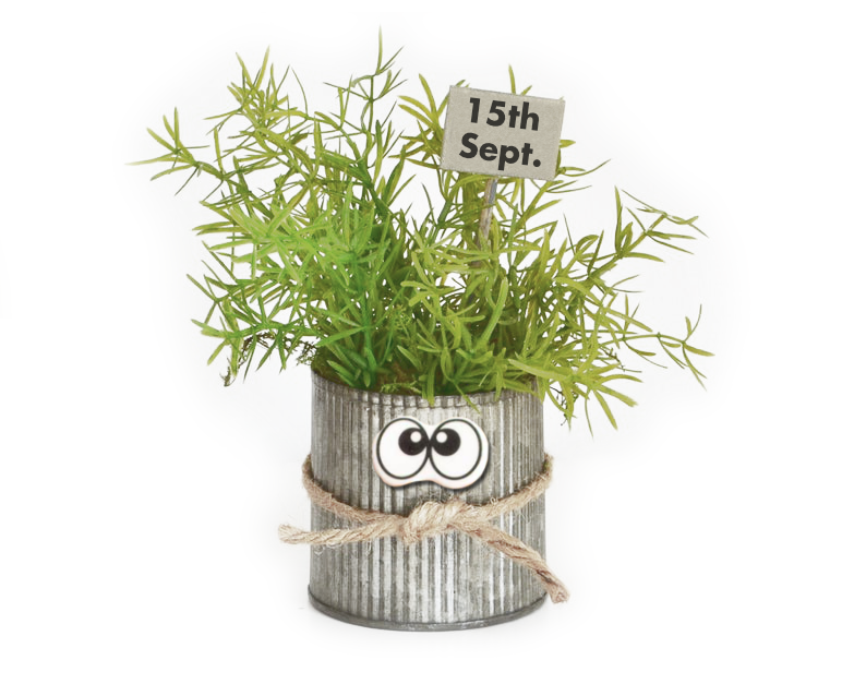 It's that thyme 2019.png