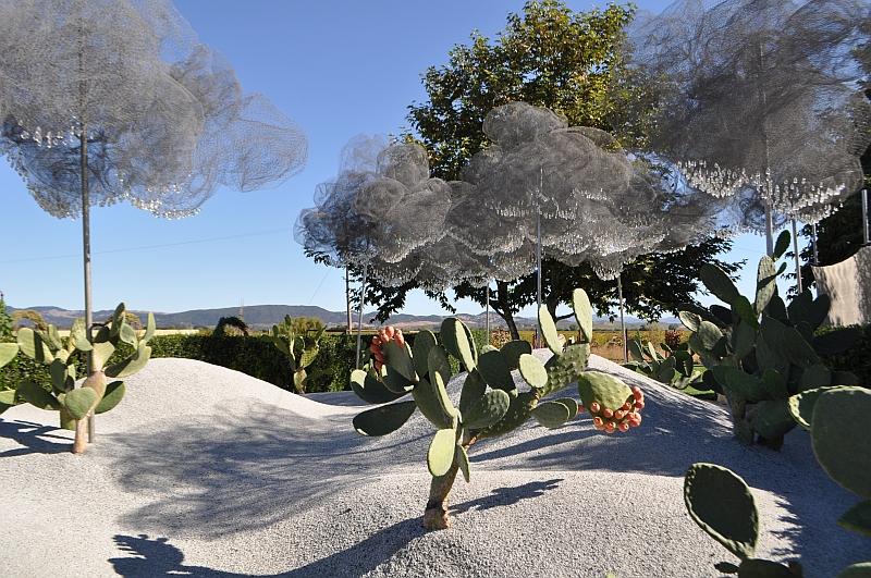 cornerstone-cacti.jpg