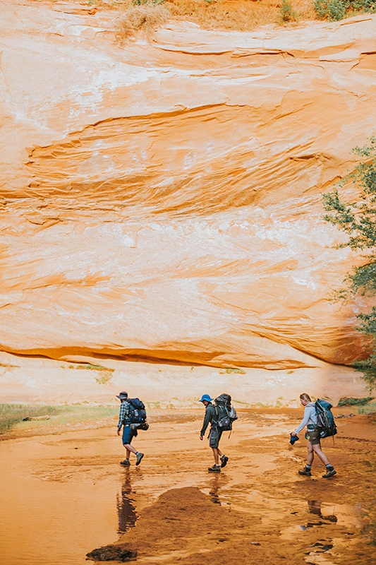 Overnight Backpack trip to Coyote Gulch-16.48 mile hike