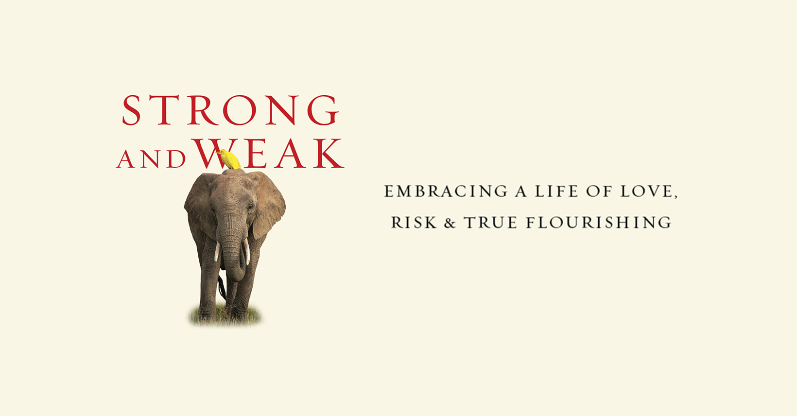 Strong and Weak Facebook Cover.png