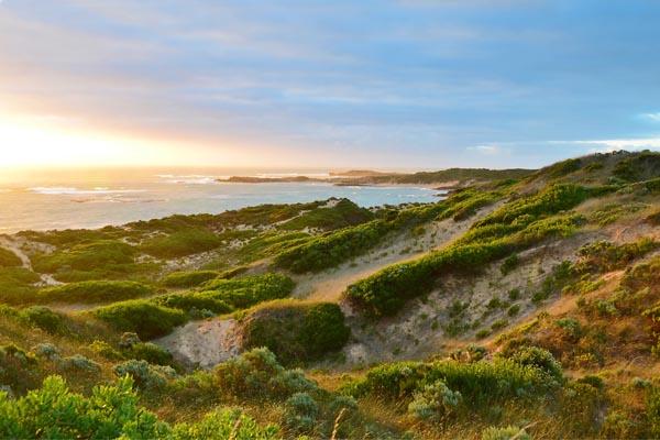 beachport-sunset-gal.jpg